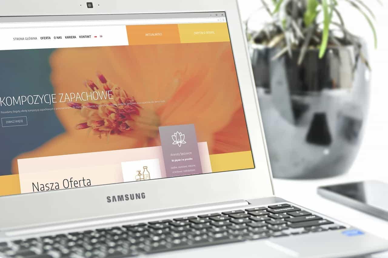 Strona internetowa dla Dystrybutora & Producenta (3)