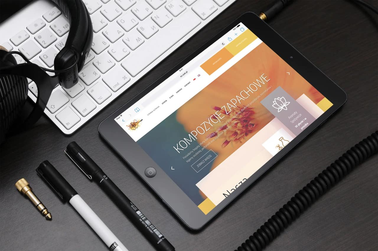 Strona internetowa dla Dystrybutora & Producenta (4)