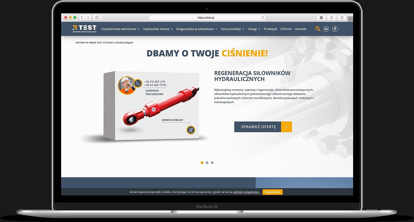 strona internetowa dla test.pl - Agencja Marketingowa OzonMedia